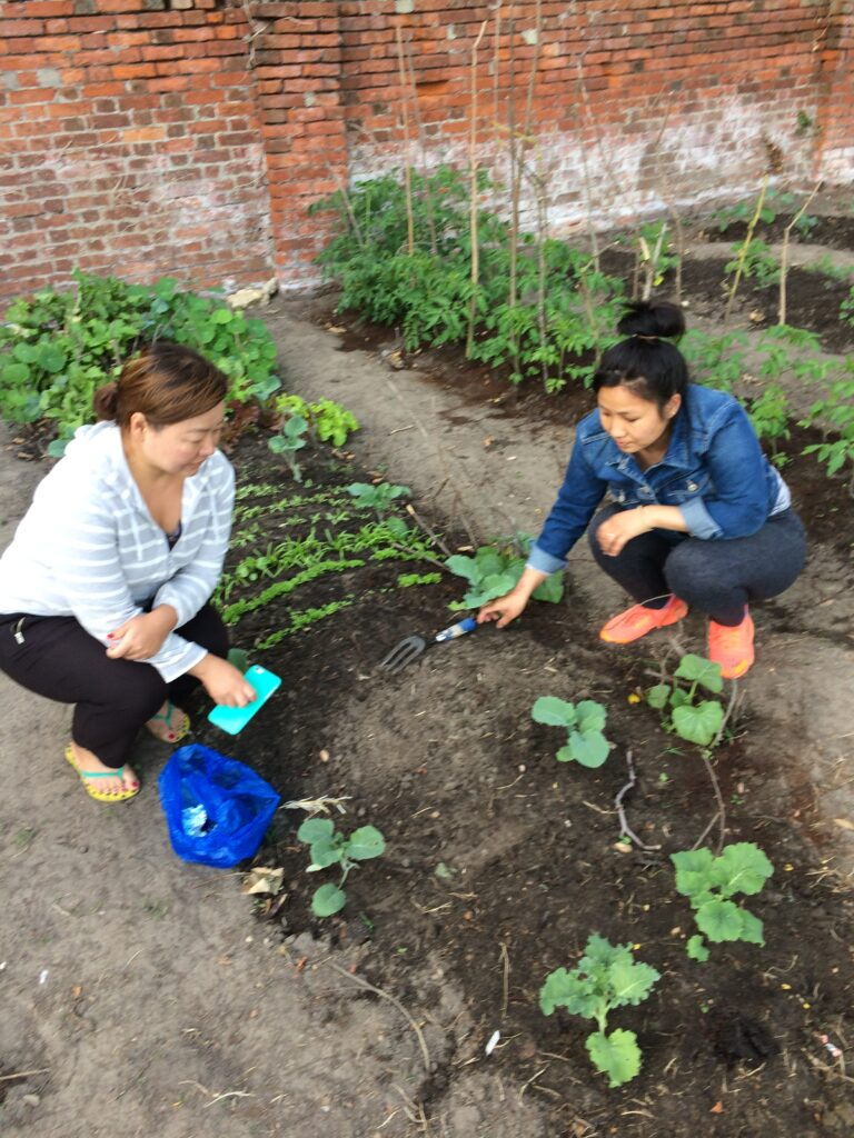 Kalpana and family member planting lentils, Nepalese string beans, Rayo spinach, mustard seeds, and red hot chilli seeds